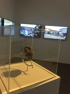 In the foreground stands a vitrine with an artificial rock compressed from dust; in the background three monitors show videos by the artist